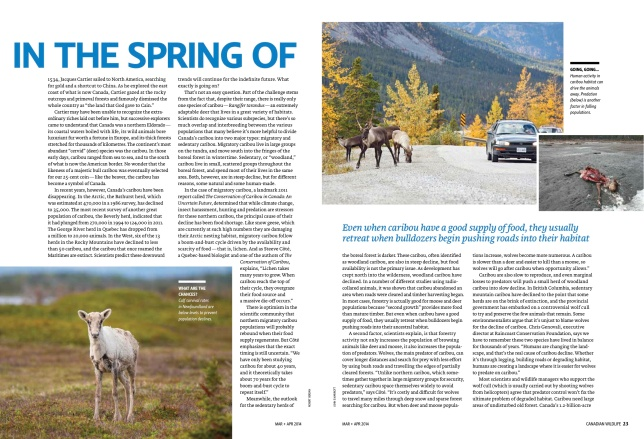 MarApr_2014_Caribou_State_Of_The_Nation_2